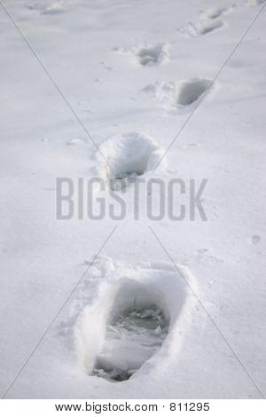 Schritt auf Schnee