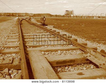Auschwitz009