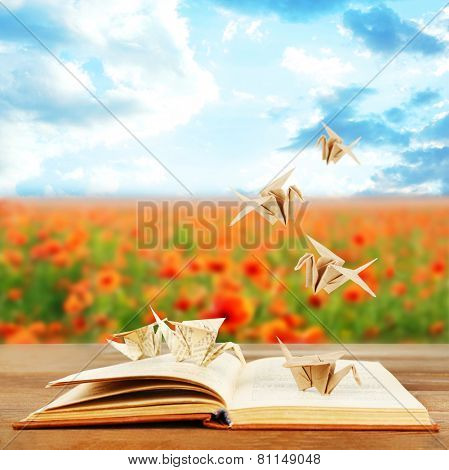 Origami cranes on book on nature background