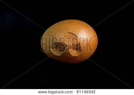 Chicken Eggs Isolated On Black Background