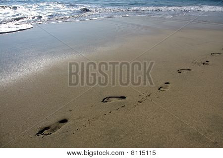Footprints On The Beach Of Puerto Escondido