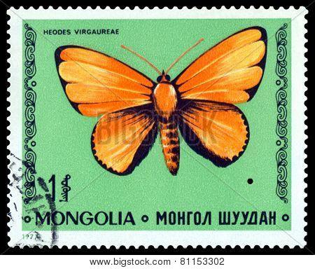 Vintage  Postage Stamp. Butterfly Heodes Virgaureae.