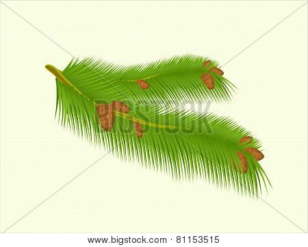 Green branch on background vector stock illustration