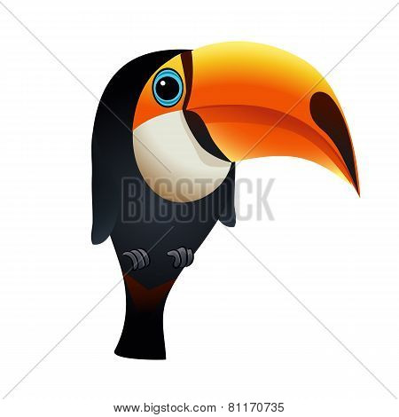 Illustration of toucan bird