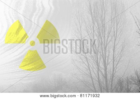 Radioactive symbol at misty dead forest.