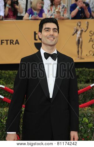 LOS ANGELES - JAN 25:  Louis Cancelmi at the 2015 Screen Actor Guild Awards at the Shrine Auditorium on January 25, 2015 in Los Angeles, CA