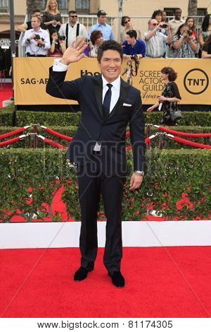 LOS ANGELES - JAN 25:  Louis Aguirre at the 2015 Screen Actor Guild Awards at the Shrine Auditorium on January 25, 2015 in Los Angeles, CA