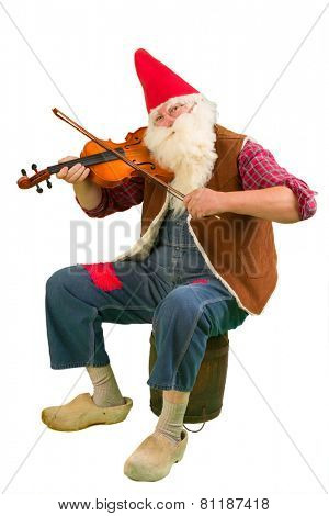 Funny garden gnome playing on a violin