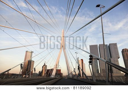 Driving On Erasmus Bridge