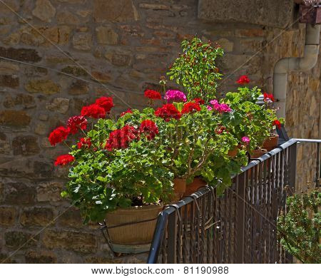 Small Tuscan Balcony With Blooming Geraniums
