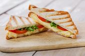 picture of tomato sandwich  - grilled sandwich toast with tomato and cheese