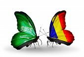 pic of chad  - Two butterflies with flags on wings as symbol of relations Saudi Arabia and Chad Romania - JPG