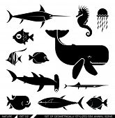 stock photo of piranha  - Set of various sea animal icons - JPG