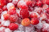 picture of frozen  - Frozen berries - JPG