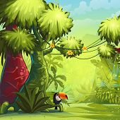 picture of toucan  - Illustration sunny morning in the jungle with bird toucan - JPG