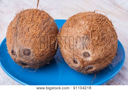 Two Coconuts On Blue Plate