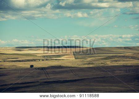 field.Vintage filter.