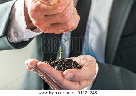 Businessman Pouring Water Over A Small Green Plant