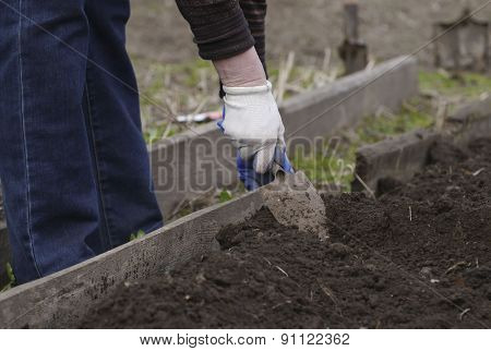 Hand Of An Old Woman Digging Shovel