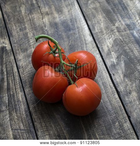 Freshly Picked Ripe Red Tomatoes