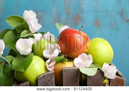 Fresh apples with apple blossom in crate, close up