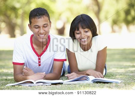 Teenage Couple Studying In Park