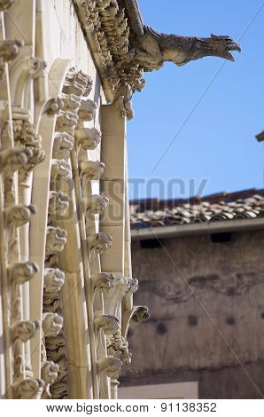 Foreground of a gargoyle in Cuenca Cathedral, Castilla la Mancha, Spain.