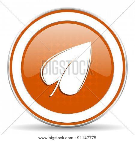 nature orange icon leaf symbol