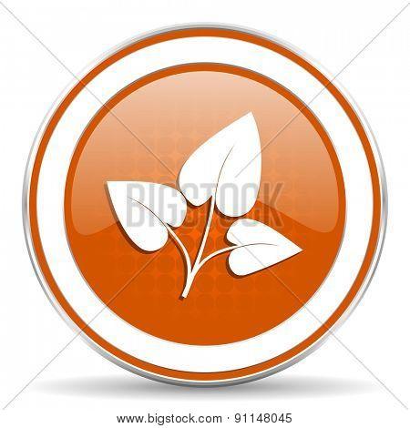 leaf orange icon nature sign