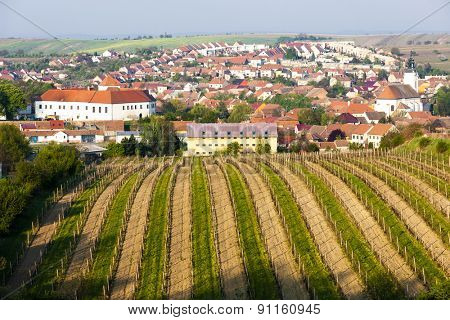 Cejkovice with vineyard, Czech Republic