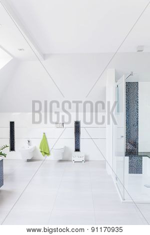 Modern Decor Of Bathroom