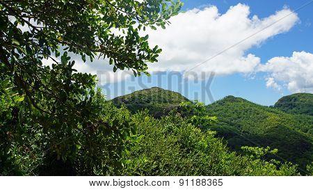 Mountains Of Mahe