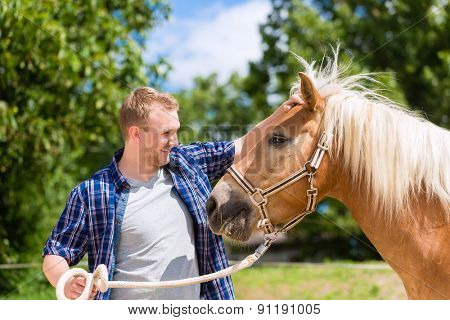 Man petting horse on pony farm