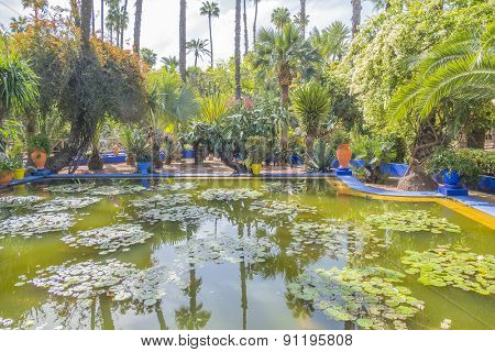 MARRAKESH, MOROCCO, APRIL 4, 2015: Majorelle Gardens - pond