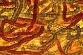 foto of worm  - abstract image resembling bacteria worms abstract texture - JPG