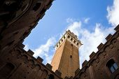 pic of piazza  - Piazza del Campo in Siena Tuscany Italy - JPG
