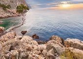 image of crimea  - Rocky beach of Crimea with pinetrees over the sea - JPG