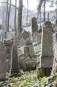 image of cemetery  - Jewish Cemetery - JPG