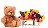 foto of bunch roses  - Bunch of roses and a teddy bear on white background - JPG