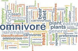 picture of omnivore  - Background concept wordcloud illustration of omnivore - JPG