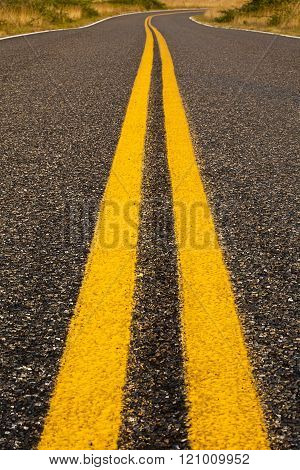 Bright Yellow Lines