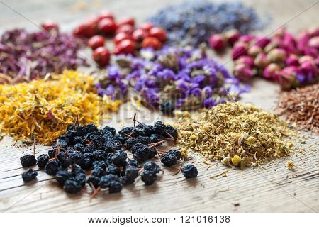 Healing Herbs, Herbal Tea Assortment And Healthy Berries On Wooden Table. Herbal Medicine.