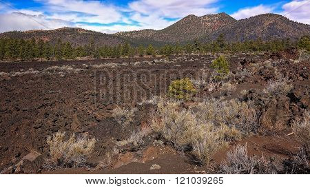Bonito Lava Flow At Sunset Crater National Monument