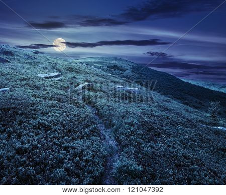 Path Through Hillside With White Boulders At Night