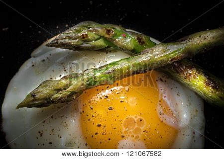 Fried egg and roasted asparagus in black plate