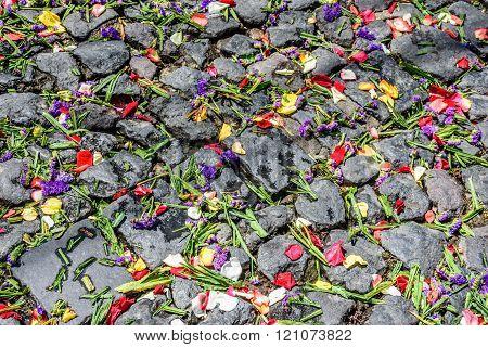 Lent Carpet Of Flower Petals On Cobblestones, Antigua, Guatemala
