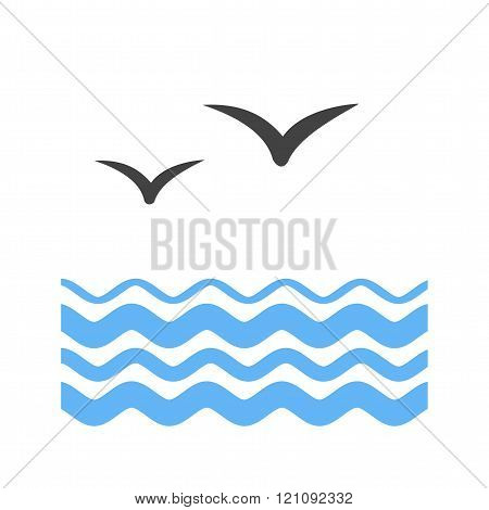 Water and Birds