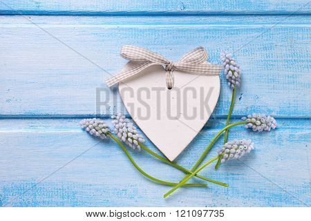 Decorative Heart And Tender Flowers Muscaries  On Blue Painted Wooden Background.