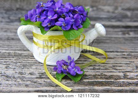 Wood Violets Flowers (viola Odorata)