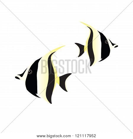 moorish idol isolated